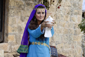 "Cote de Pablo is one of the stars of ""The Dovekeepers,"" a TV miniseries now on Blu-ray and DVD, available exclusively through Amazon.com. (CBS/Paramount)"