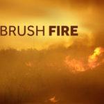 Brush-Fire-jpg