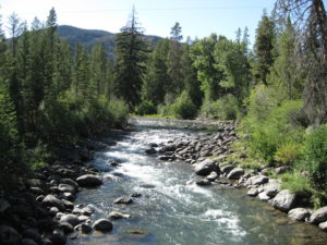 creek-009