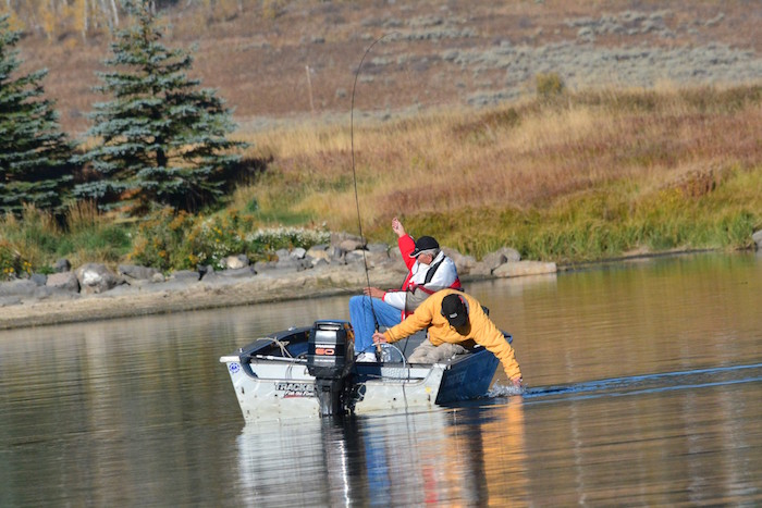 Schiess henrys lake producing trophy fish east idaho news for Henrys lake fishing